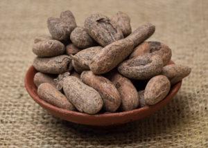 cacao[1]